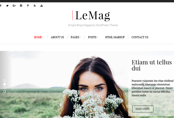 lemag blog theme