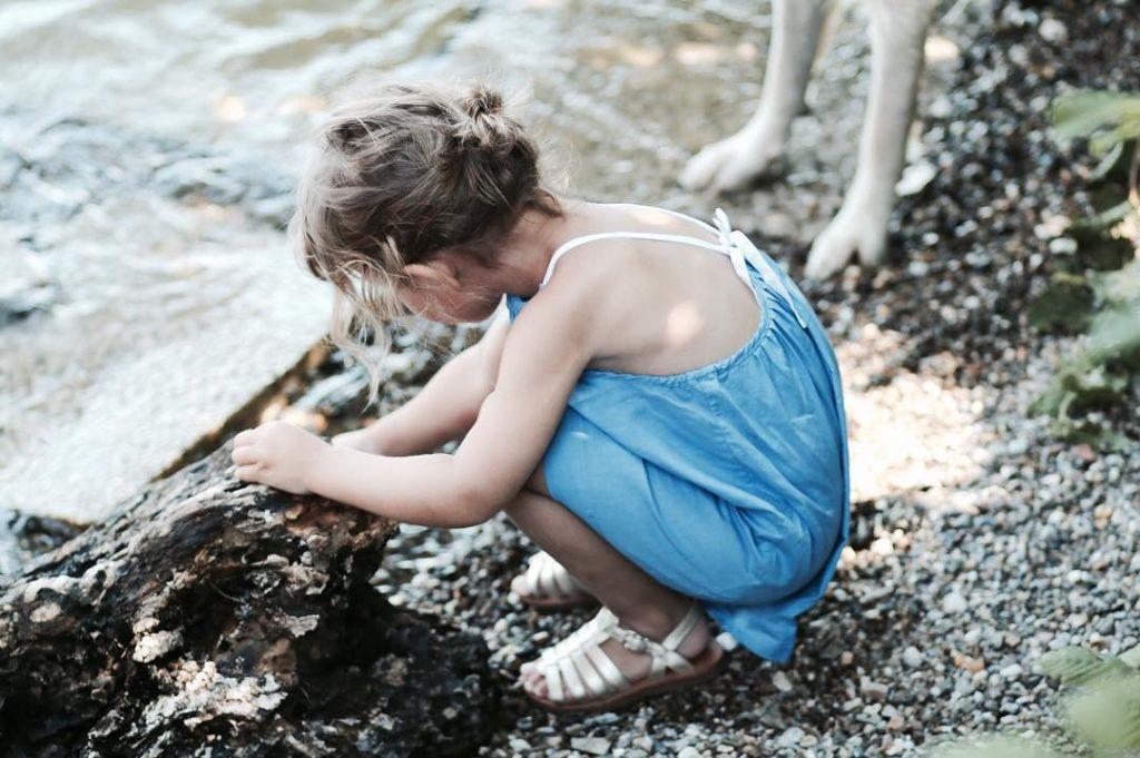 Heute wollen wir Steine Hlzer und Blumen suchen um einhellip